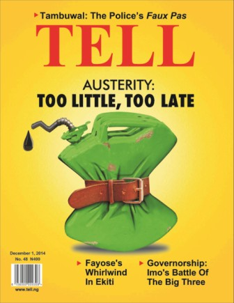 Austerity: Too Little, Too Late